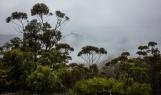Australie-bluemountains-0663