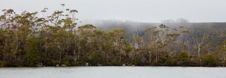 Tasmanie-Australie-0202