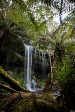 Tasmanie-Australie-0249