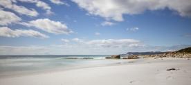 Tasmanie-Australie-0528